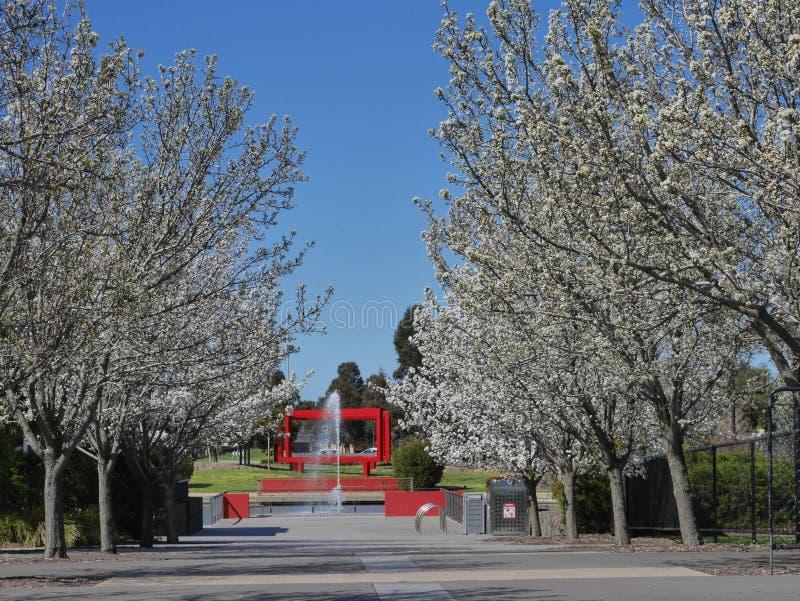 Viale di fiori, cascata e scultura immagini stock