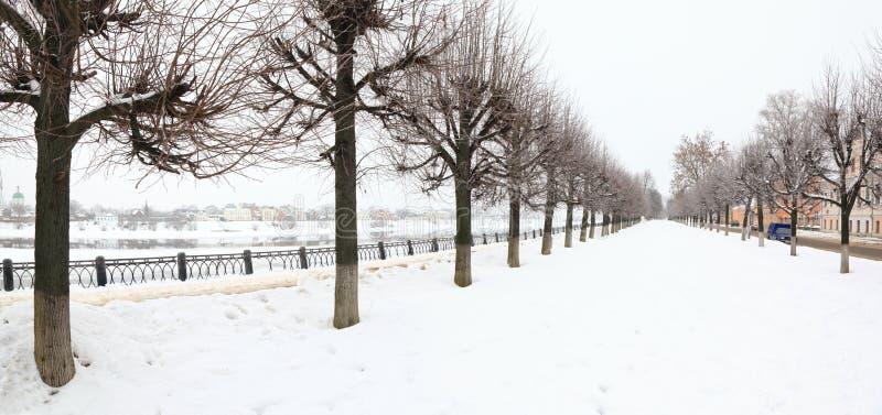 Viale Snowbound sull'argine immagini stock libere da diritti