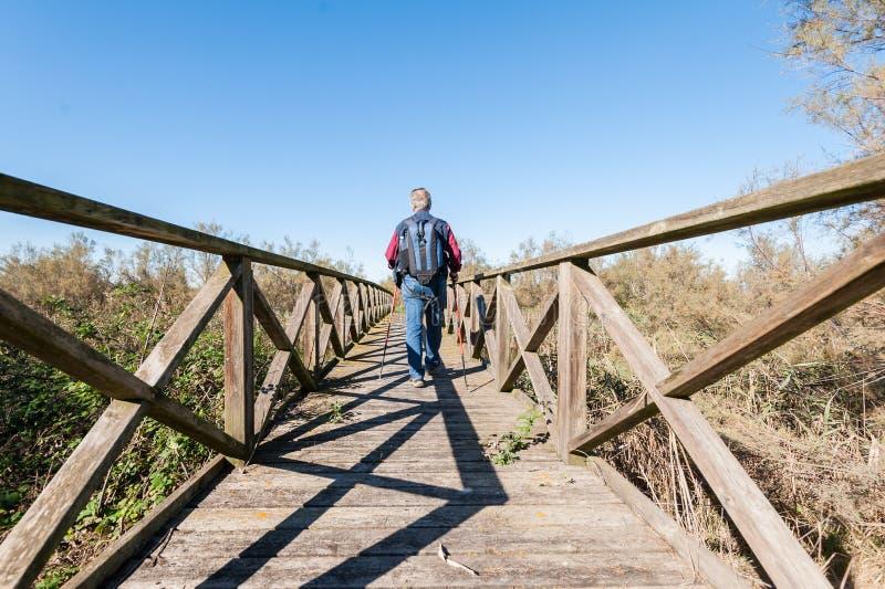 Viandante 60 anni su una passerella di legno fotografia stock libera da diritti