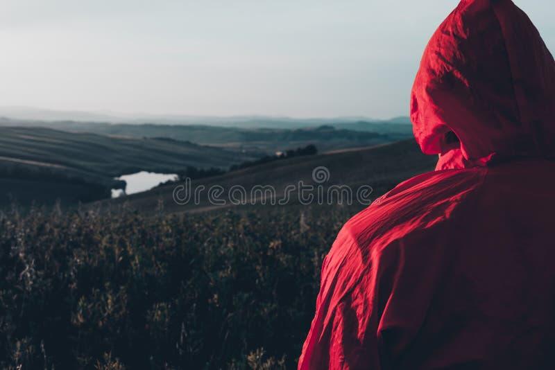 Viandante con il rivestimento rosso che guarda il panorama fotografia stock libera da diritti