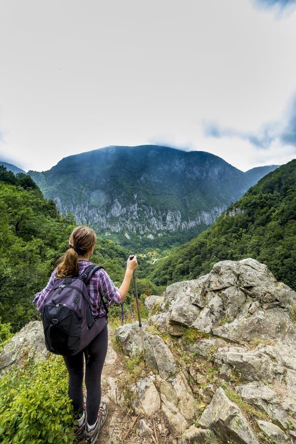 Viandante della giovane donna che ammira la bella montagna fotografia stock