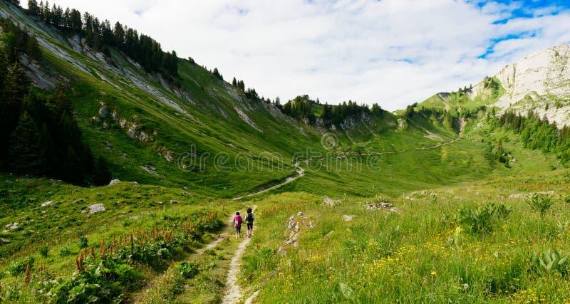 Viandante delle donne su una traccia nelle alpi immagini stock libere da diritti