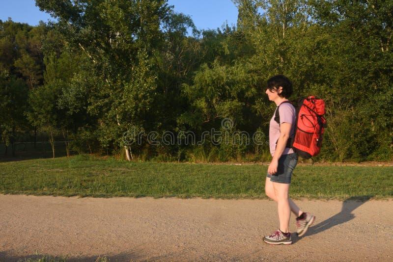 Viandante femminile che cammina su un percorso immagini stock libere da diritti