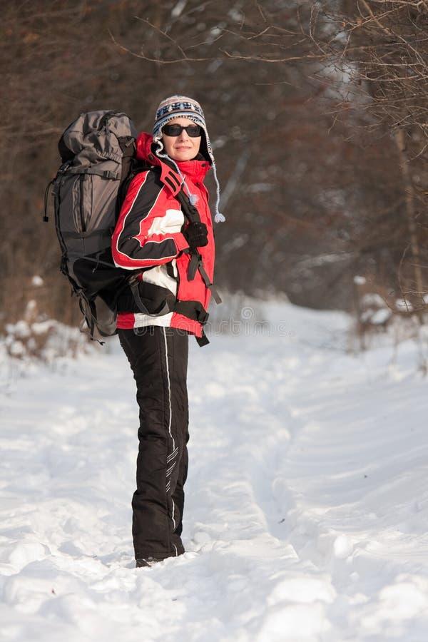 Viandante Nella Foresta Di Inverno Fotografia Stock