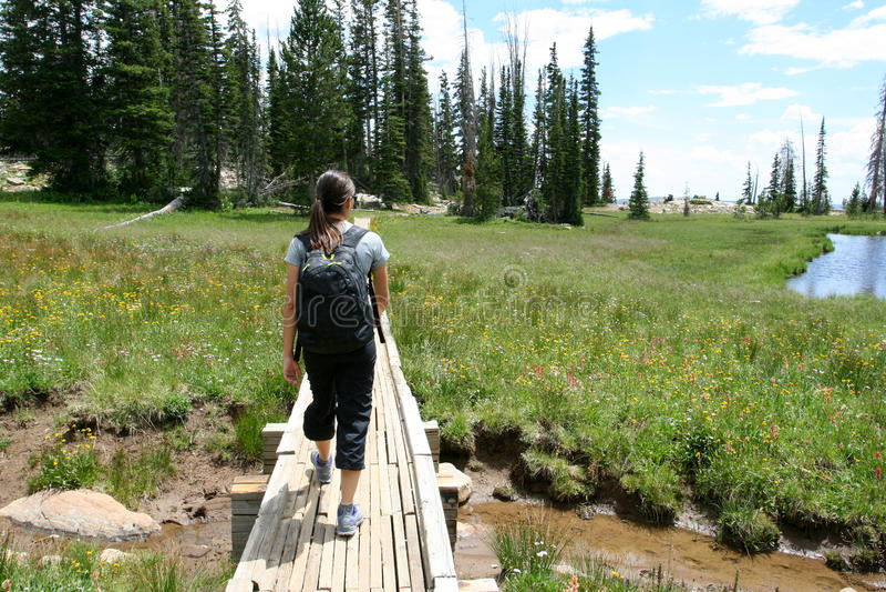 Viandante nelle montagne vicino ad un lago fotografia stock