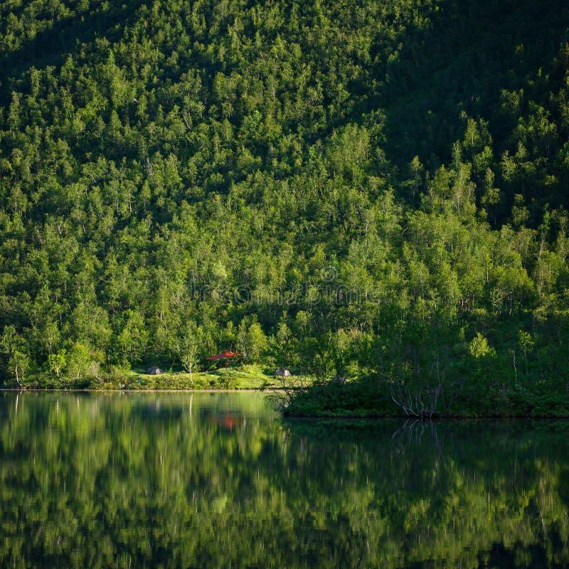 Viandanti del campo con le tende sulla riva di un lago della montagna, fotografie stock libere da diritti