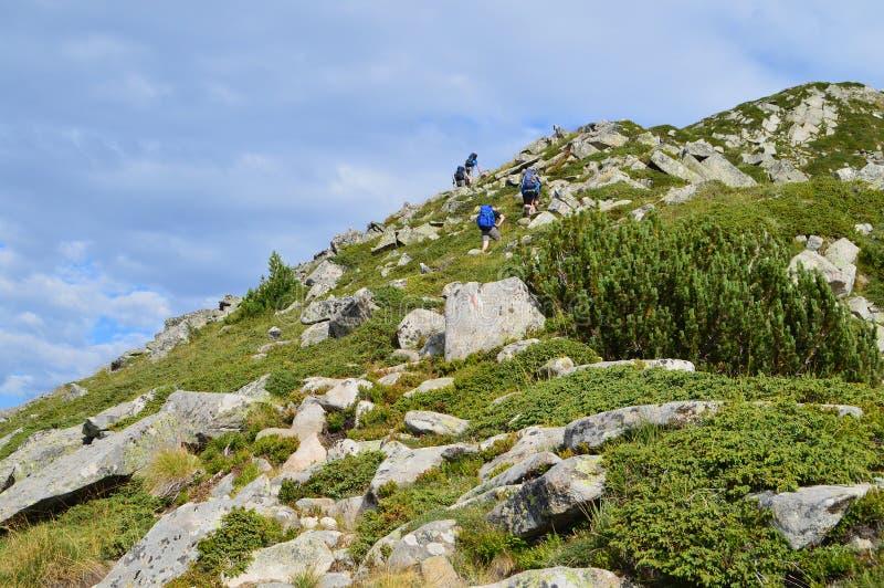 Viandanti nella montagna immagine stock