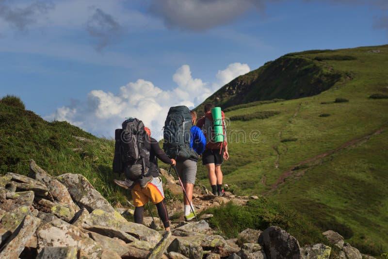 Viandanti sulla traccia nelle montagne di Islandic Viaggio in parco nazionale Landmannalaugar, Islanda la valle è coperta di verd fotografia stock libera da diritti