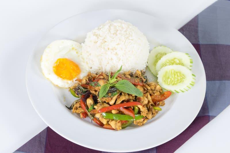 Viande hachée épicée au-dessus de riz photo libre de droits