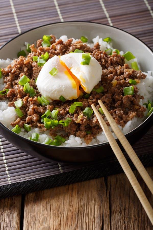 Viande hachée épicée japonaise Soboro avec l'oeuf, le riz et l'oignon vert photo libre de droits