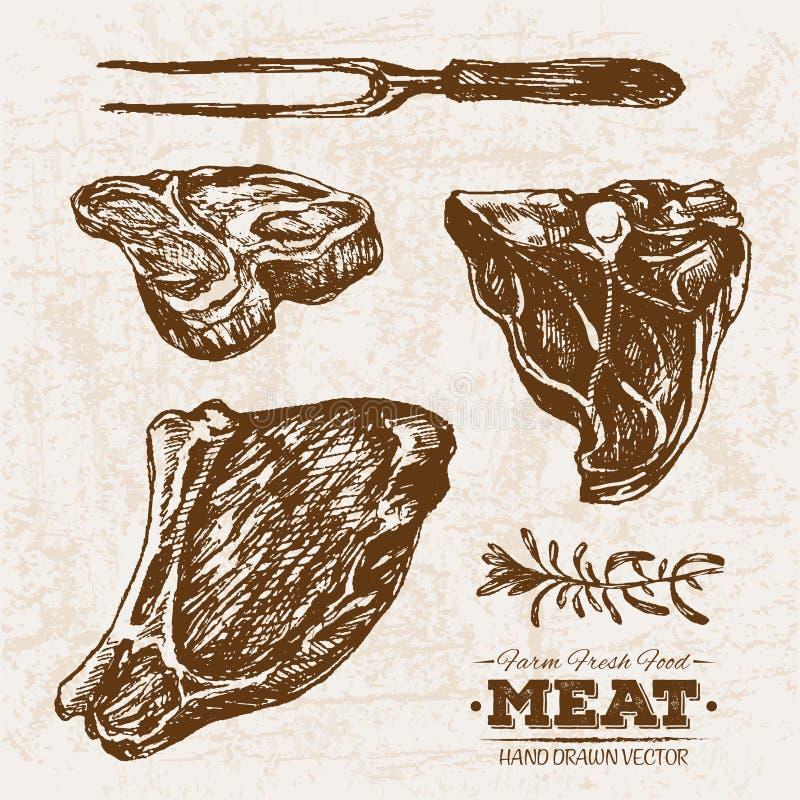 Viande tirée par la main d'enjeu de boeuf de croquis avec le romarin illustration stock