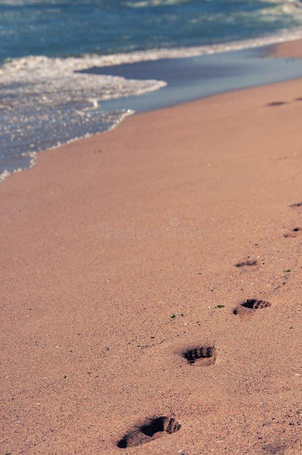Vibrações do verão pelo mar imagem de stock