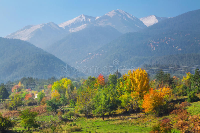 Vibrant autumn panorama background with colorful green, red, yellow trees and high mountains peaks stock photos