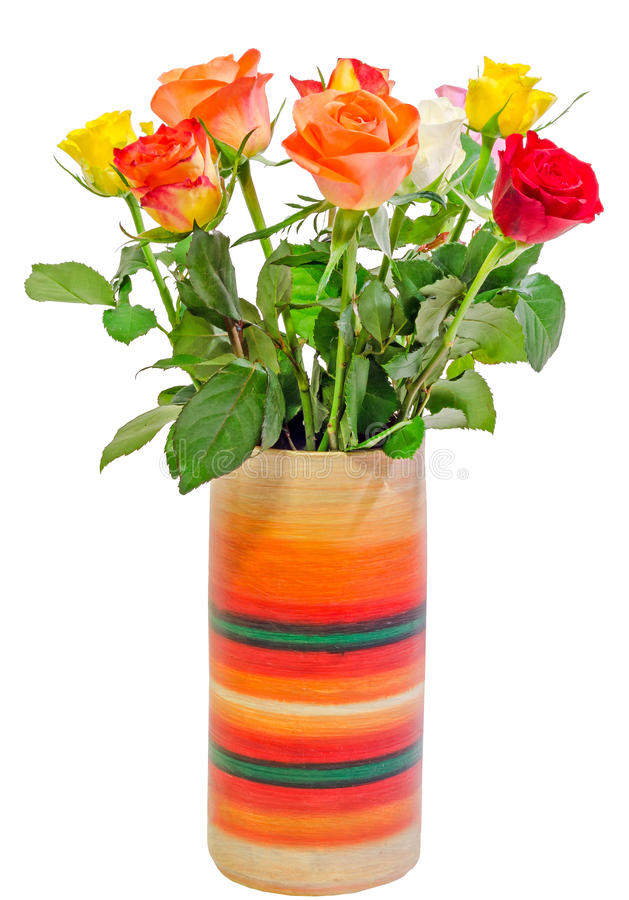Vibrant colored (red, yellow, orange, white) roses flowers in a colored vase, close up, bouquet, floral arrangement. White background royalty free stock photo