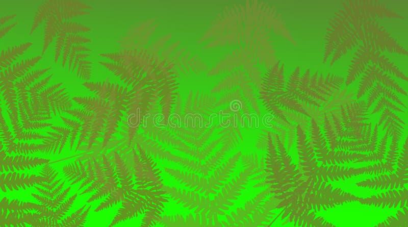 Vibrant fern background. vector illustration
