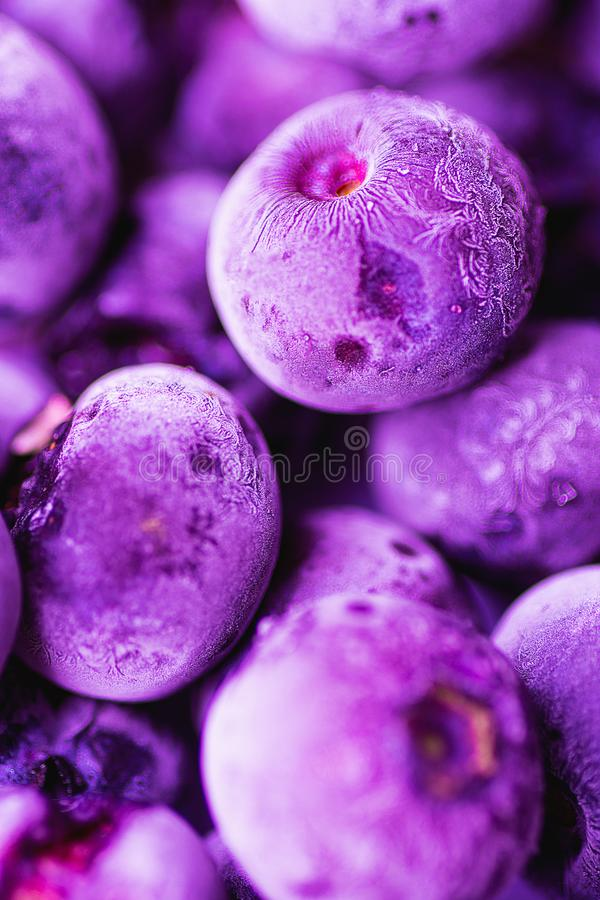 Vibrant Frozen Blueberries in Trendy Ultra Violet Color with Beautiful Frost Pattern and Texture. Summer Food Background stock images