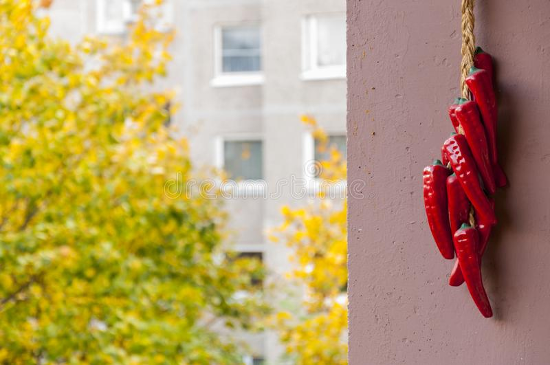 Red Clay Chili Peppers Decoration Hanging On The Balcony Stock Photo ...
