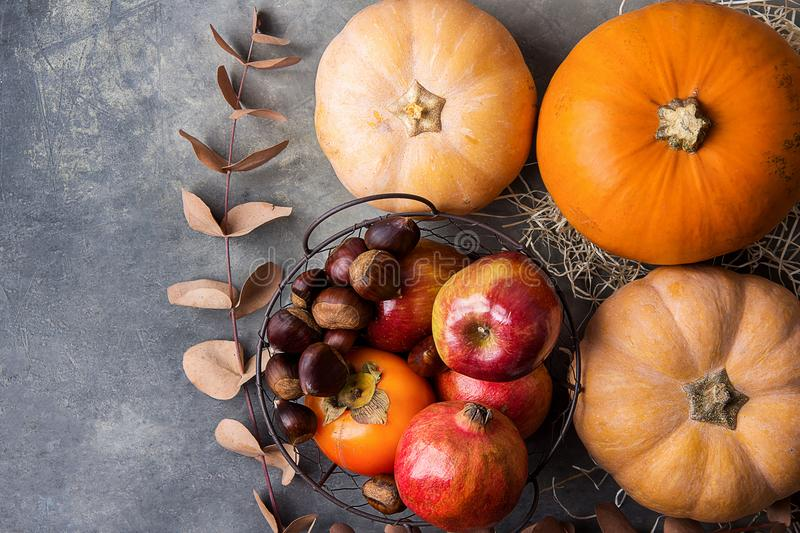Vibrant Orange Color Pumpkin Ripe Organic Red Glossy Apples Pomegranates Chestnuts Persimmons Dry Autumn on Grey Stone Background. royalty free stock photos