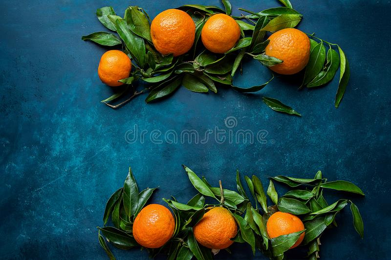 Vibrant Orange Tangerines on Branches Green Leaves Arranged in Composition Border Frame on Dark Blue Background. Christmas. New Year Greeting Card Poster Banner stock photos