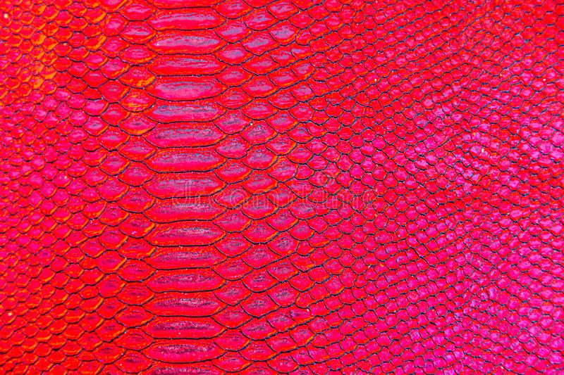 Red snake or dragon scale texture print royalty free stock image