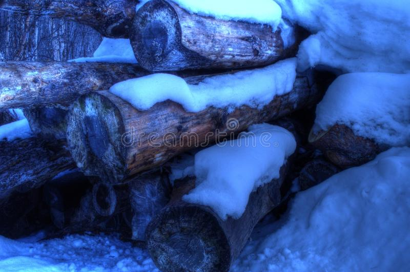 Vibrant stack of huge pine tree logs covered in snow. In the arctic circle winter royalty free stock photography