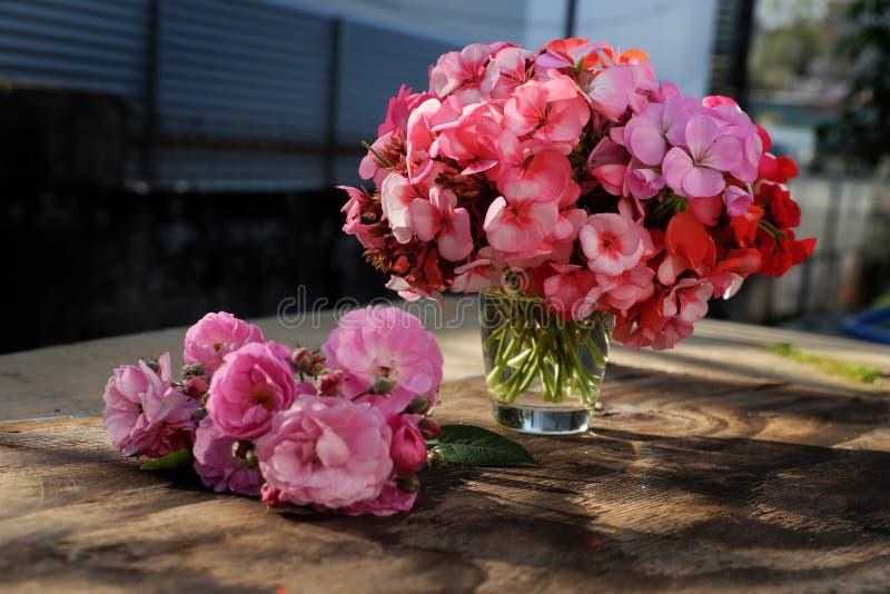 Vase of flower, pink geranium bouquet stock images