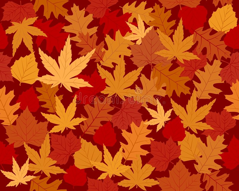 Vibrantly Colored Autumn Leaves Wallpaper Royalty Free Stock Photography