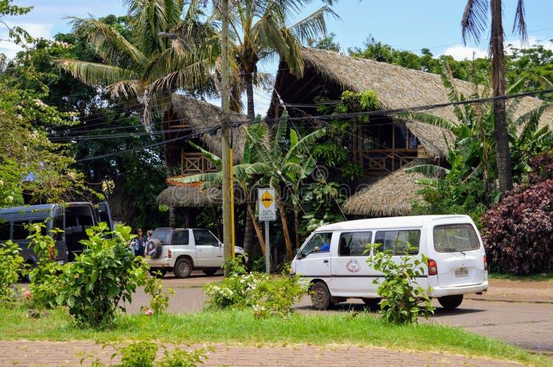 Vibraphone d'île de Pâques photo libre de droits
