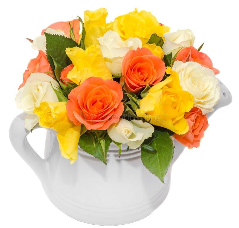 Vibrerande kulört steg rosor för blommor (rött, orange, gula och vita) i ett vitt vatten kan, isolerad vit bakgrund fotografering för bildbyråer