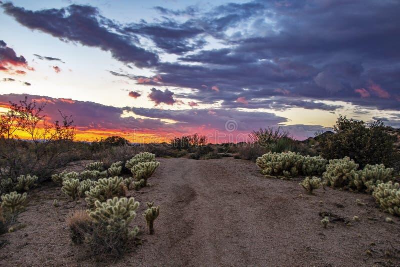 Vibrierende Arizona-Wüstensonnenuntergangspur zum Horizont in Scottsdale lizenzfreies stockfoto