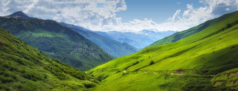 Vibrierende Berglandschaft Grüne Wiesen auf den hohen Hügeln in Georgia, Svaneti-Region Panoramablick auf grasartigen Hochländern stockfotografie