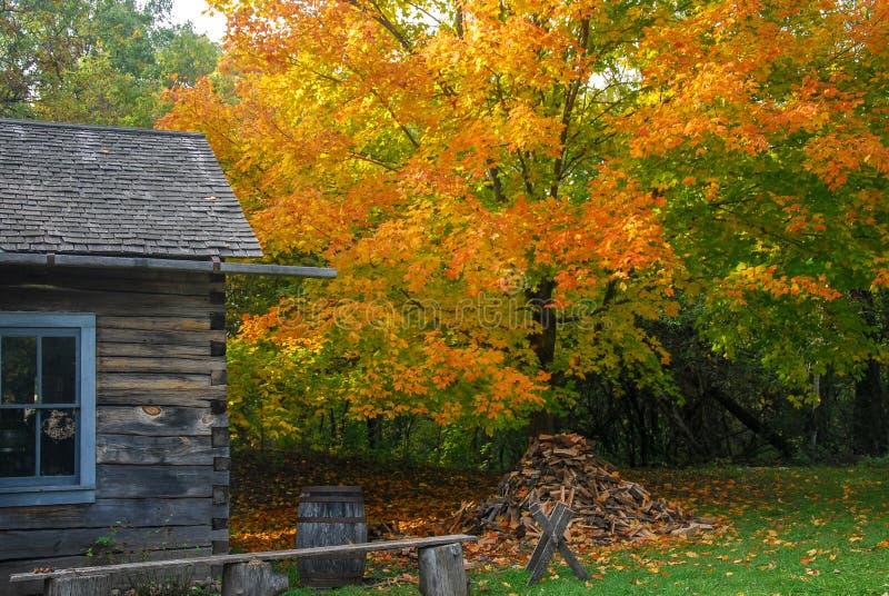 Vibrierender Autumn Colors an der Alten Welt Wisconsin stockbild