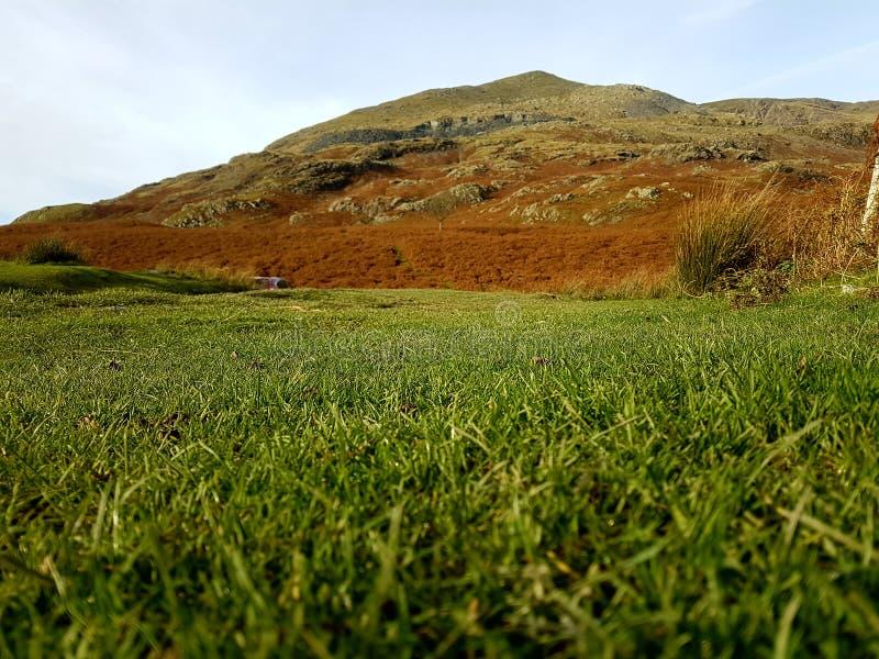Vibrierender Berg vom Gras lizenzfreies stockfoto