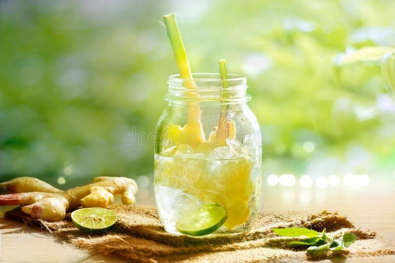 Vibrierender und bunter Ingwer mit Zitrone Detoxwasser und -kraut lizenzfreies stockbild