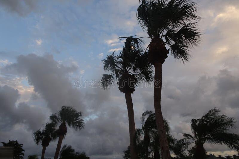 vibrierender und stürmischer Sonnenuntergang in den Tropen mit einem Schattenbild von a lizenzfreies stockbild