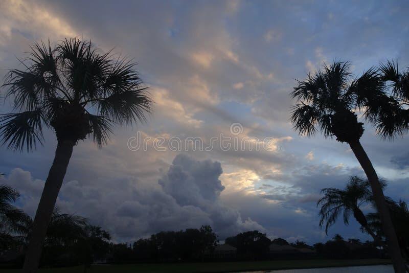 vibrierender und stürmischer Sonnenuntergang in den Tropen mit einem Schattenbild von a stockbilder