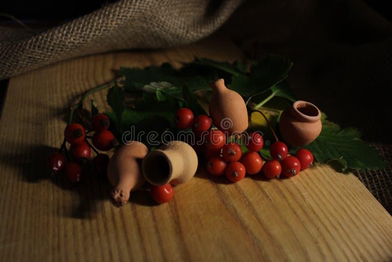 Viburno con le piccole brocche dell'argilla fotografia stock libera da diritti
