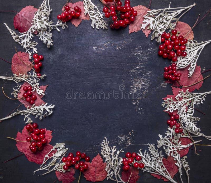 Viburnum vermelho das folhas e das bagas de outono, espaço alinhado do quadro para a opinião superior do fundo rústico de madeira foto de stock royalty free
