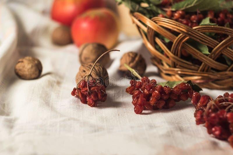 Viburnum vermelho na cesta de vime imagem de stock royalty free