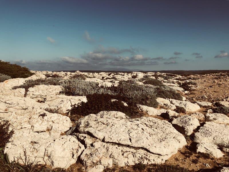 Vicente Coast en Portugal fotografía de archivo libre de regalías