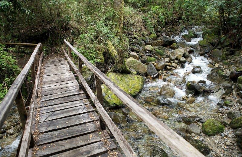 Vicente Perez Rosales National Park, Chile fotografía de archivo libre de regalías