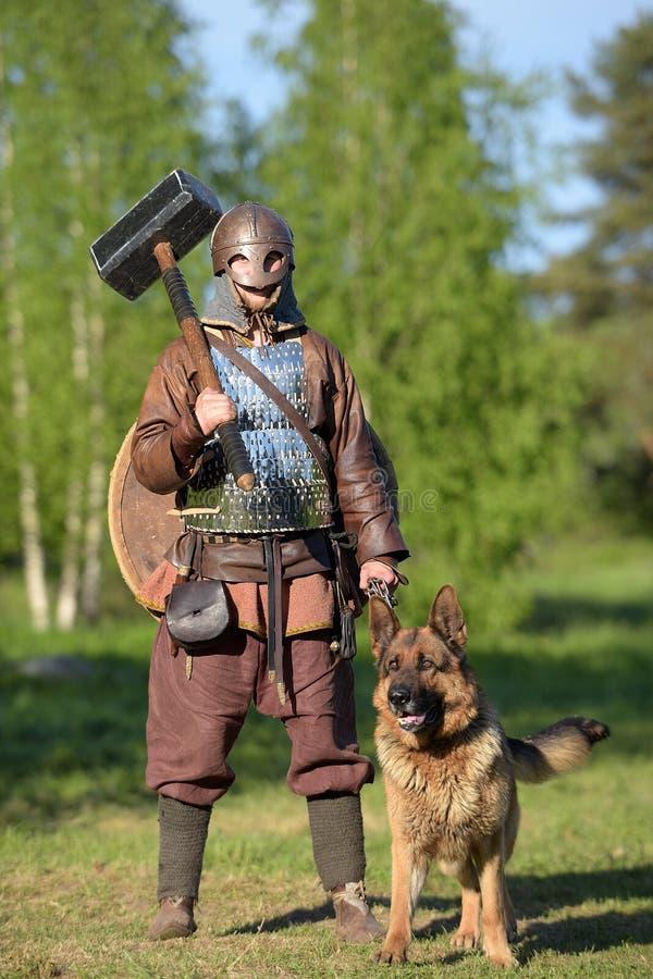 Vichingo in armatura con un martello e un cane, fotografia stock libera da diritti