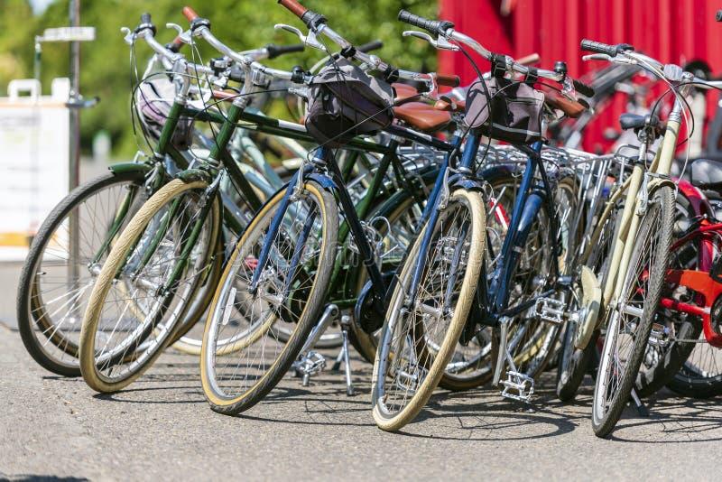 Vicino al container ci sono biciclette in affitto e viaggi in città in attesa di ciclisti fotografia stock