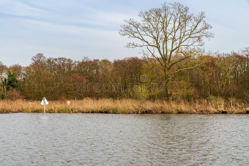 Vicino a Wroxham, il Broads, Norfolk, Inghilterra, Regno Unito fotografia stock libera da diritti