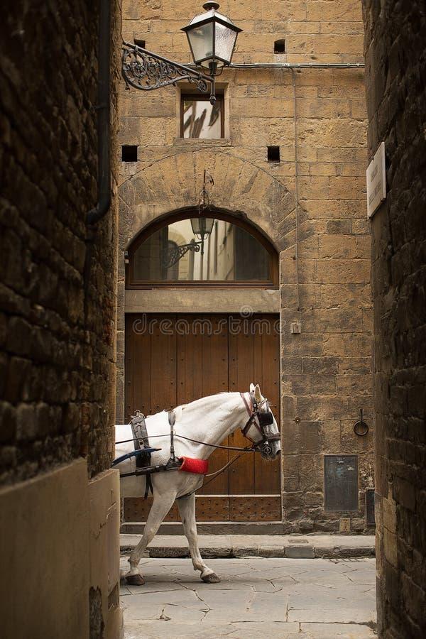 Vicoli antichi di Firenze fotografie stock libere da diritti