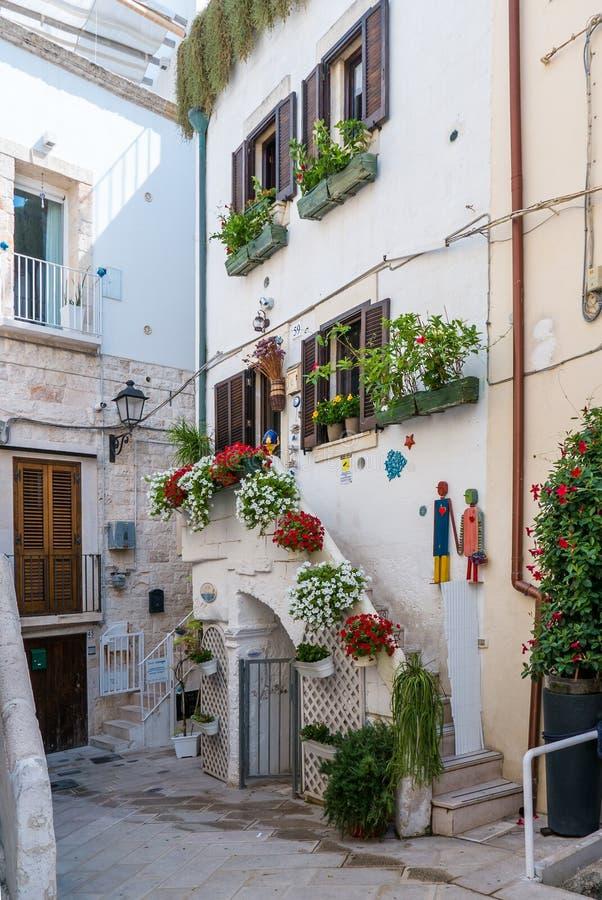 Vicolo accogliente con le piante in vecchia città pittoresca di Polignano una giumenta immagini stock libere da diritti