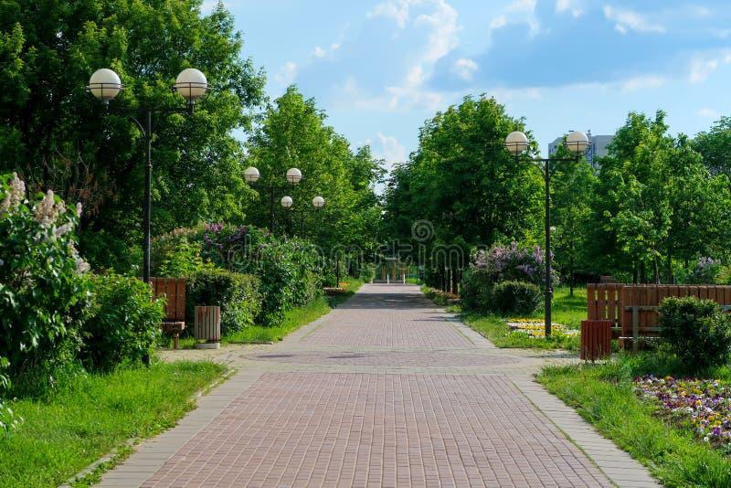 Vicolo del parco di estate con le aiole e la vista pittoresca degli alberi immagini stock