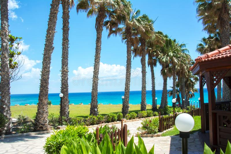 Vicolo della palma in Protaras, Cipro fotografie stock libere da diritti