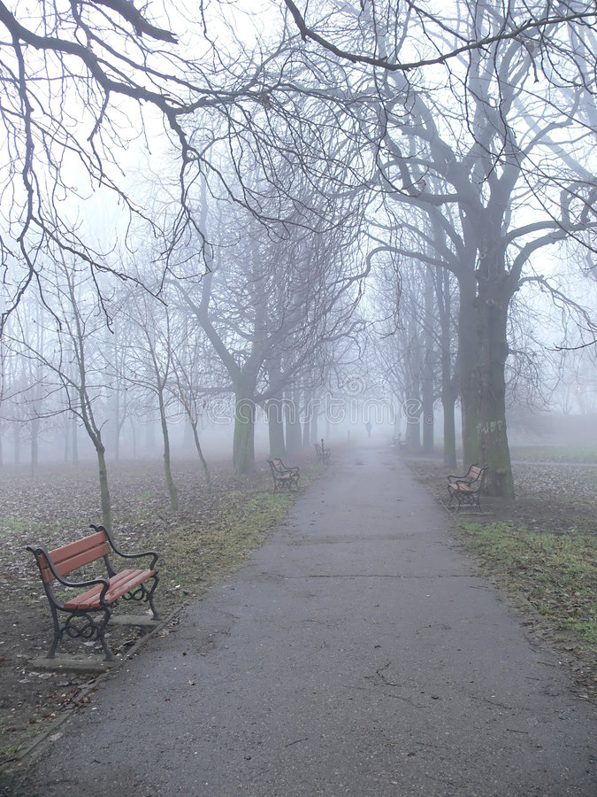 Vicolo della sosta nella nebbia immagine stock