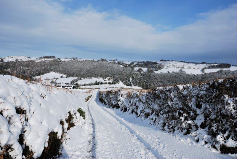 Vicolo di Snowy in Dartmoor fotografie stock libere da diritti